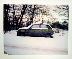 Polaroid (14)