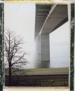Polaroid (31)