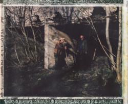 Polaroid (33)