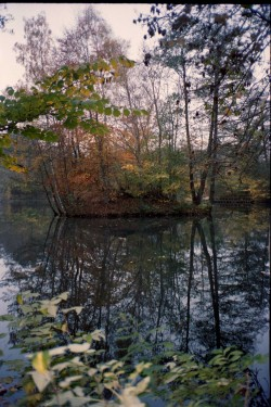 2015_november_olympus_portra22